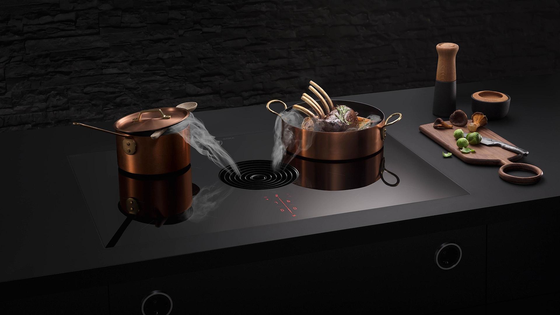 Bora Plaque De Cuisson nouvelles tables de cuisson plaque bora avec hotte aspirante